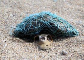 تا سال 2050، دریاها بیشتر حاوی پلاستیک خواهند بود تا ماهی
